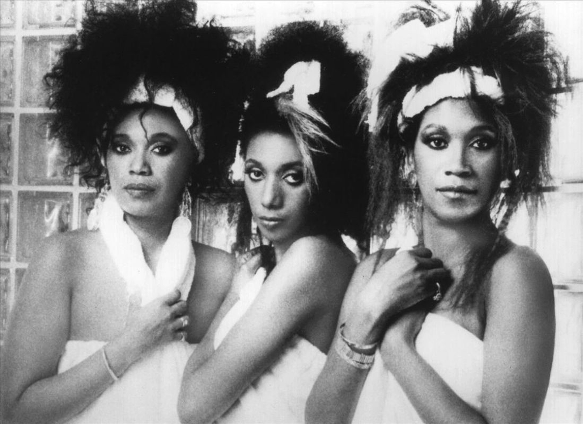 pointer-sisters-Creation5web-header